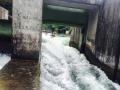 Wildwasser Kanal Augsburg (06/2015)